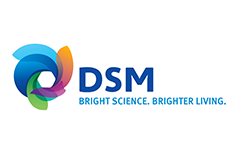 01 dsm-logo-jpg-version